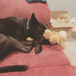 9/7/17 - Cuddling with his bear